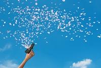 スタートピストルから飛び出す桜の花びら