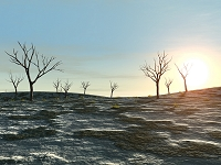 枯れ木と荒涼の丘