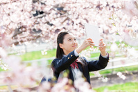 桜の下で写真を撮る女子学生