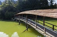 愛媛県 弓削神社の屋根付き橋