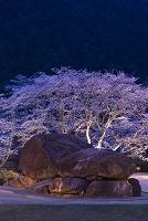 奈良県 石舞台