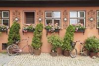 ドイツ ディンケルスビュール 窓辺の花