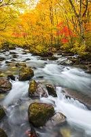 青森県 紅葉と奥入瀬渓流