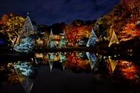 東京都 肥後細川庭園