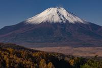 山梨県 二十曲峠より冠雪の富士山