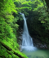 福岡県 福岡市 早良区_花乱の滝