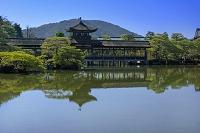 京都府 京都市 平安神宮 橋殿