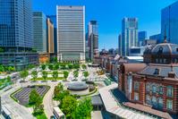 東京都 新緑の東京駅