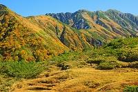 富山県 天狗平から奥大日岳(左)と別山(右の山)