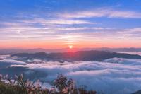 兵庫県 来日岳から望む丸山川の雲海