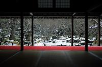 京都府 圓光寺 庭園雪