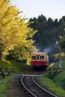 千葉県 秋の小湊鉄道