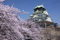大阪府 大阪城