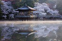 奈良県 奈良市 奈良公園浮見堂