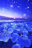 北海道 十勝川河口の氷と太平洋の朝