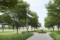 風力、太陽光による発電設備を備えた電灯