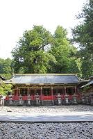 栃木県 日光東照宮の中神庫