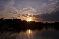 昭和記念公園 夕景