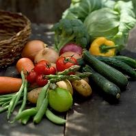 採れたての野菜の集合