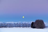 北海道 夜明け前の日高山脈と黄色い月 帯広市