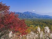 山梨県 紅葉の美し森より富士山 清里