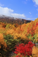 青森県 八甲田・地獄沼付近の紅葉