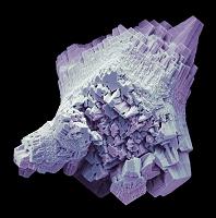 顕微鏡写真 水垢