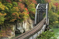 福島県 大沼郡 金山町 第四只見川橋梁 只見線 紅葉