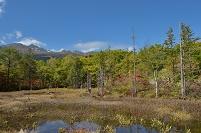 長野県 乗鞍高原  一の瀬・どじょう池の紅葉と乗鞍岳
