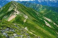 長野県 爺ヶ岳の稜線