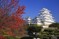 兵庫県 姫路城 西の丸