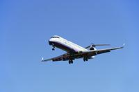 大阪府 着陸する旅客機