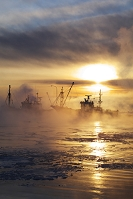 北海道 標津漁港の朝