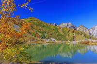 長野県 紅葉の八方池と不帰の剣 八方尾根