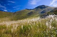 奈良県 ススキ一面の曽爾高原と亀山