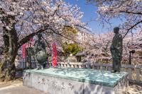 岐阜県 桜咲く奥の細道むすびの地