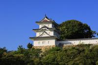 兵庫県 明石城の坤櫓