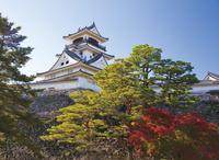 高知県 紅葉の高知城