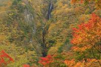 長野県 松川渓谷八滝