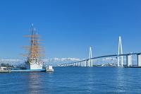 富山県 新湊大橋と海王丸