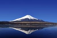富士山 山中湖村 山梨県