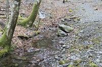 安倍峠 安倍川の水源地