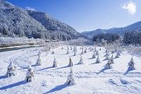 京都府 美山町 かやぶきの里雪景色