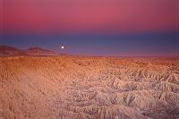 アメリカ アンザボレゴ砂漠州立公園