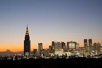 東京都 ライトアップされた新宿の高層ビル