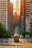 アメリカ合衆国 カリフォルニア サンフランスシスコ