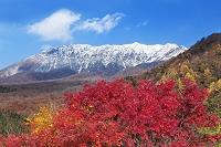 鳥取県 江府町 鍵掛峠より大山