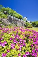 石川県 金沢城