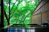 栃木県, 日光市, 温泉