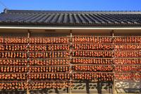 山梨県 軒下に吊るされた干し柿